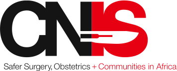 CNIS logo from letterhead